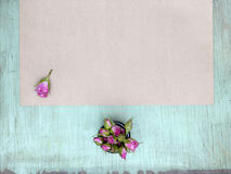 Wooden background with little pink roses. Grunge mockup. Green old painted texture. Kraft paper surface. Royalty Free Stock Photo