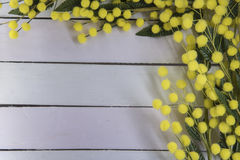 Wooden background with mimosa. Wooden  texture with mimosa useful as background for 8th of march Royalty Free Stock Photo