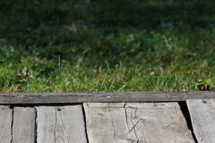 Wooden background nature Stock Photos
