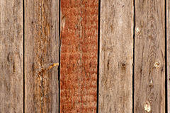 Wooden background with one painted in brown plank Stock Photos