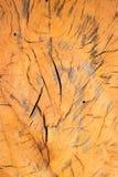 Wooden background. Orange wooden background split decorative Royalty Free Stock Image