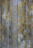 Wooden background with peeled of paint Stock Images