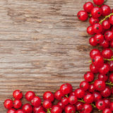 Wooden background with red berries Stock Images