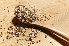 Mixed quinoa seeds on spoon made of wood stock photos