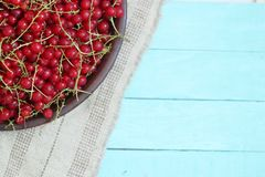 Wooden background with red currant on plate. Top view royalty free stock image