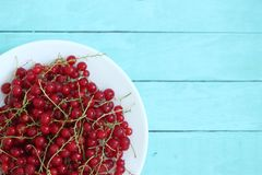 Wooden background with red currant on plate. Top view royalty free stock images