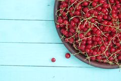 Wooden background with red currant on plate. Top view royalty free stock photography