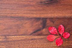 Wooden background with red leaves Royalty Free Stock Photo