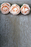 Wooden background with roses Royalty Free Stock Photos