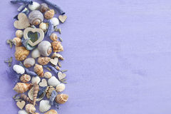 Wooden background with sea shells Stock Image