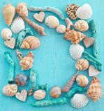 Wooden background with sea shells Stock Photography