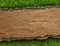 Wooden background with shadows and grass Stock Images