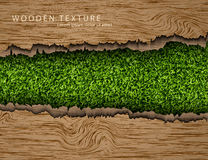 Wooden background with shadows and grass Royalty Free Stock Image