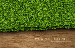 Wooden background with shadows and grass Stock Photos