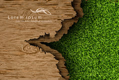 Wooden background with shadows and grass Stock Photography