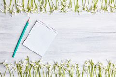Wooden background with snowdrops frame and blank note pad royalty free stock photography