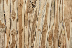 Wooden background. Teak wood texture. Abstract surface Royalty Free Stock Image