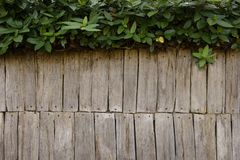 Wooden background texture with leaves Royalty Free Stock Photos