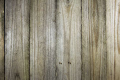 Wooden background or texture Royalty Free Stock Image