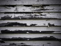 Wooden background texture on an old house stock images