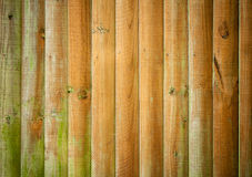 Wooden background texture Royalty Free Stock Image