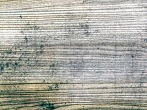 Wooden background and texture royalty free stock images