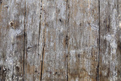Wooden background. With uneven white old paint Stock Photography