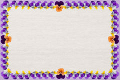 Wooden background with violas frame Stock Image
