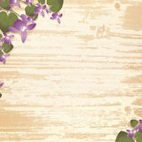 Wooden background with violet flowers Royalty Free Stock Images