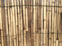 Wooden for background. Wooden wall for background texture brown color Stock Image