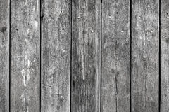 Wooden background with weathered wood and ruusty nails Stock Images