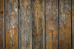 Wooden background with weathered wood and ruusty nails Royalty Free Stock Image