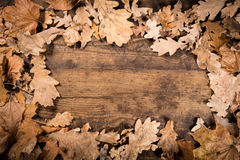 Wooden background with withered leaves Stock Photo