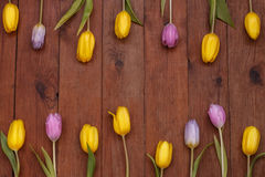 Wooden background with yellow and pink tulips. Brown wood plank background with yellow and pink tulips Stock Photography