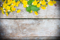 Wooden background with yellow and white flowers on it Stock Image