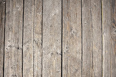 Wooden backgrounds, texture concept Stock Images