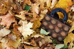 Wooden bag with autumn leaves. Wooden bag with autumn maple leaves Royalty Free Stock Photo