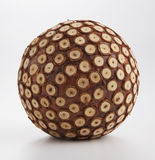Wooden Ball 1 Royalty Free Stock Photo