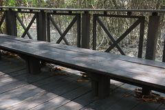 Wooden bank. Mangrove forest at background stock image