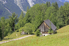 Wooden barn. In the austrian alps Royalty Free Stock Photo