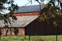 Wooden barn in countryside. Exterior details of wooden barn building in countryside, tree branches in foreground, Yuba County, California, U.S.A Stock Photo