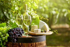 Wooden barrel with bottle and glass of white wine. Stock Images