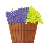 Wooden Barrel with Bunches of Wine Grape Stock Photo