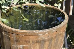 Wooden barrel filled with water. Storage in open water outdoors container Stock Photo