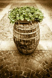 Wooden barrel with flowerpot above Stock Photography