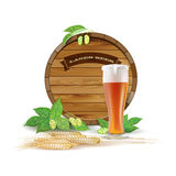 Wooden barrel, glass of beer, hops and barley Stock Image
