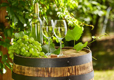 Wooden barrel with glass of white wine. Stock Photos