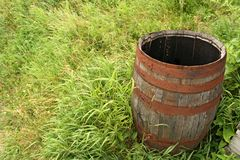 Wooden barrel in grass stock image