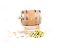Wooden barrel and hops. Isolated on a white background Royalty Free Stock Photo