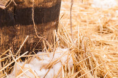 Wooden barrel, straw , snow Stock Images